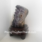 bong-thach-anh-tim-2876-01
