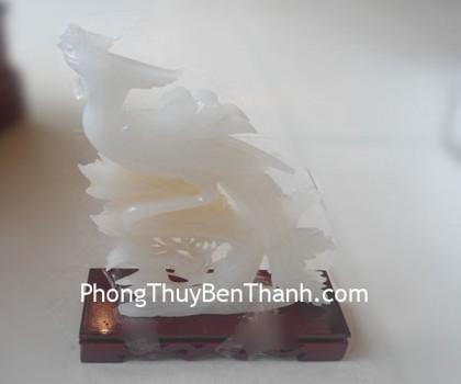 chim-cong-bach-ngoc-k056-02