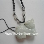 ty-huu-dung-duoi-tien-s690-02